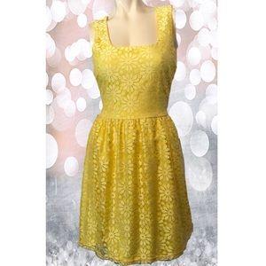 Main Strip Yellow Lace Overlay Dress